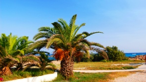 Cyprus vacation as you buy a property