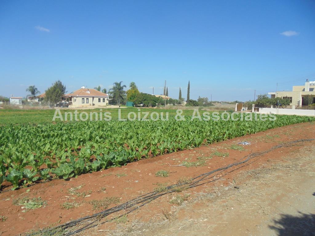 Land in Famagusta (Derynia) for sale