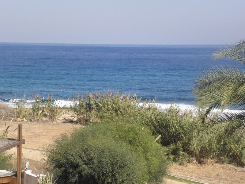 Unique Apartment for sale next to the Beach properties for sale in cyprus