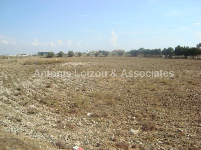 Land in Larnaca (Agios Theodoros) for sale