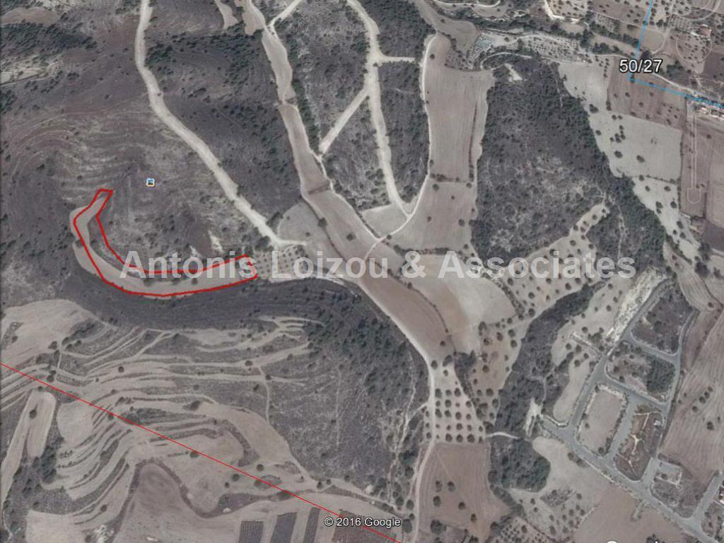 Field in Larnaca (Alethriko) for sale
