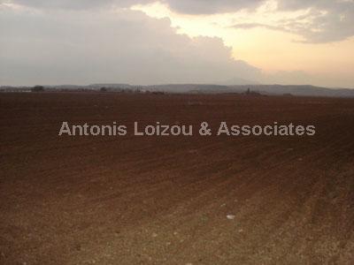 Field in Larnaca (Dromolaxia) for sale