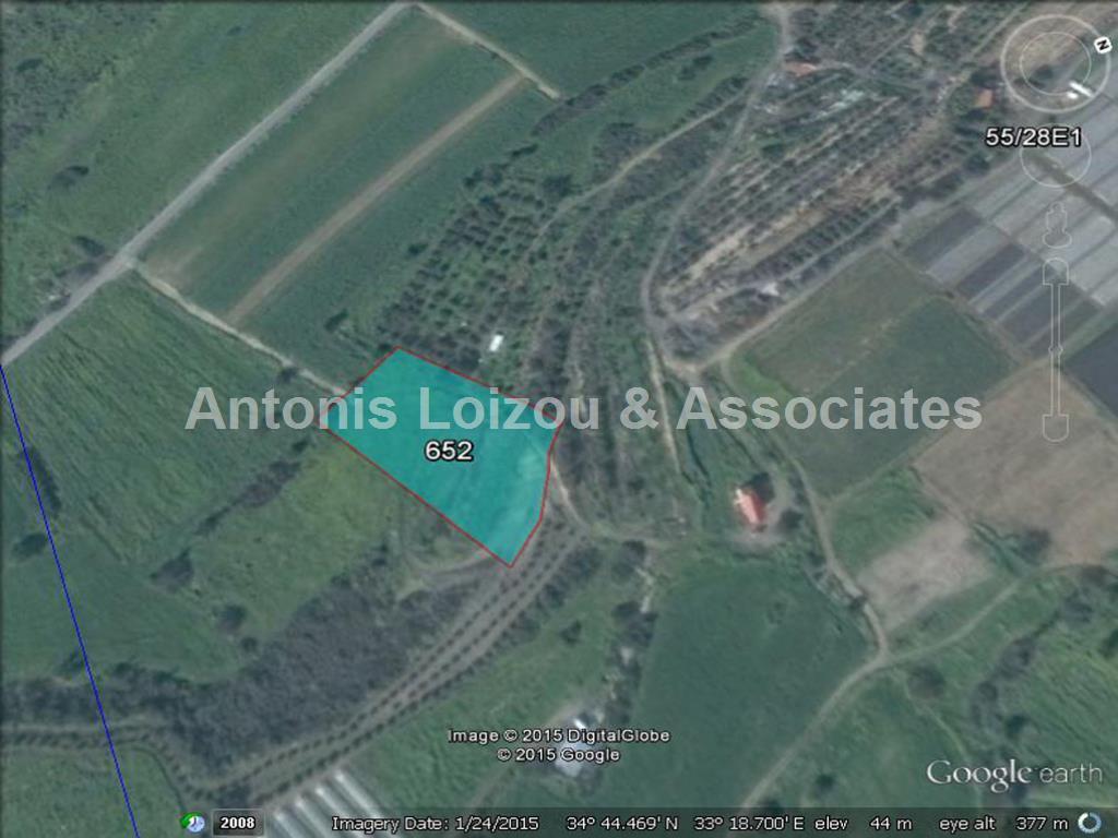 Field in Larnaca (Kalavasos) for sale