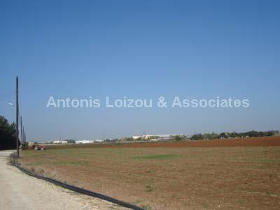 Land in Larnaca (Kiti) for sale
