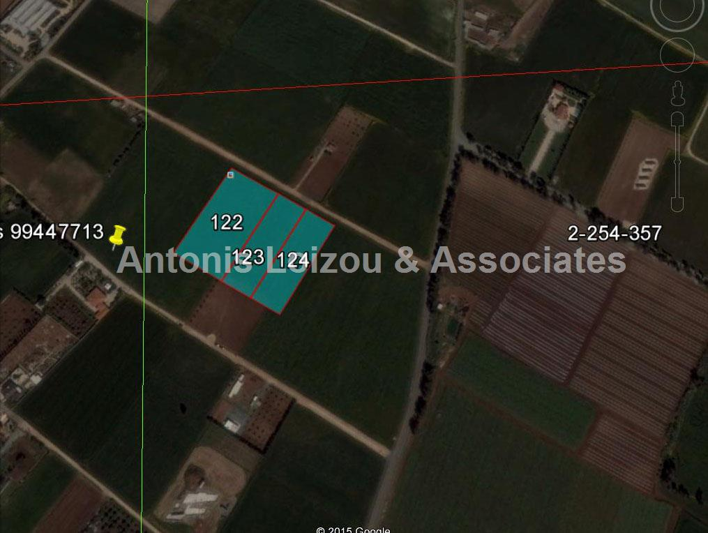 Field in Larnaca (Kiti) for sale