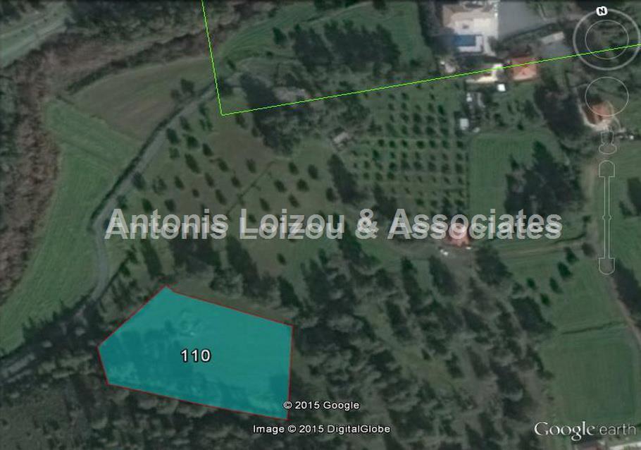 Field in Larnaca (Mosfiloti) for sale