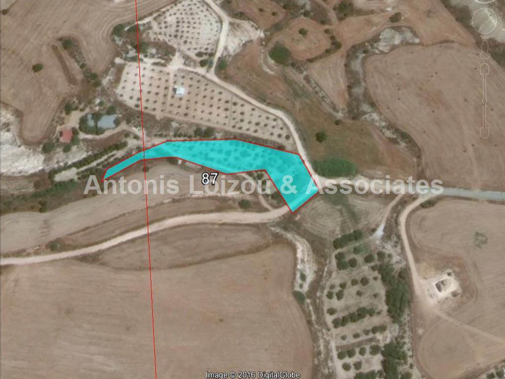 Field in Larnaca (Tersefanou) for sale