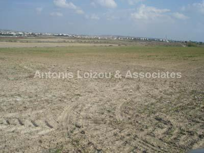 Land in Larnaca (Livadhia) for sale