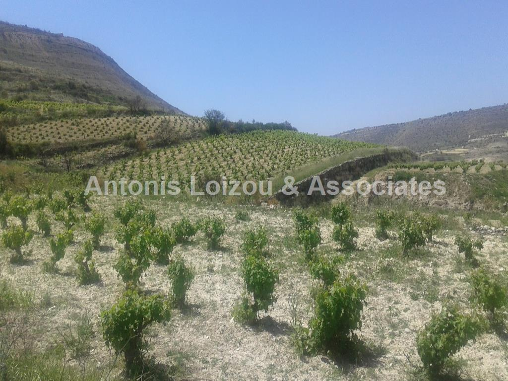 Large Agricultural Plot properties for sale in cyprus