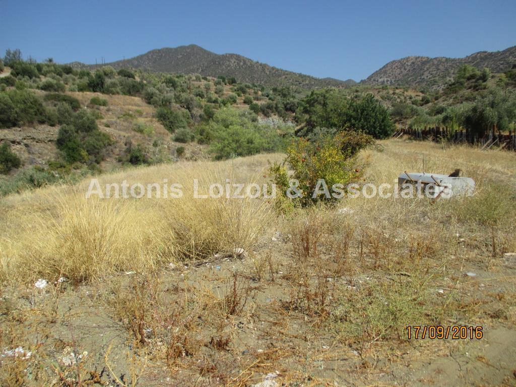 Field in Limassol (Akrounta) for sale