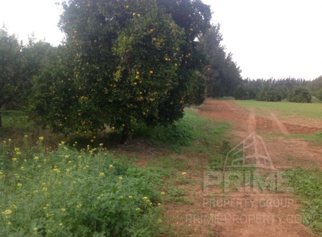 Land in Limassol (Fassouri) for sale