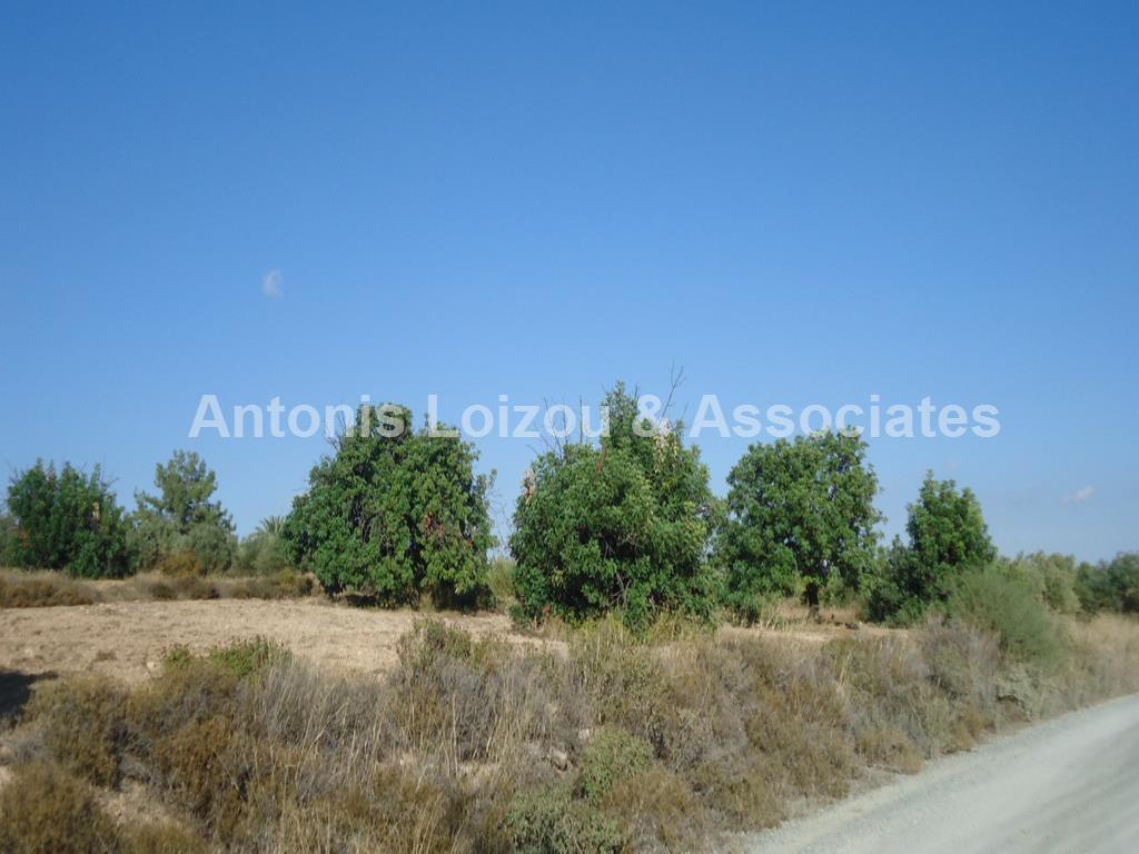 Land in Limassol (Kivides) for sale
