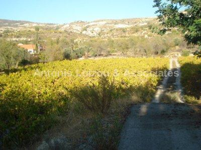 Land in Limassol (Lania) for sale