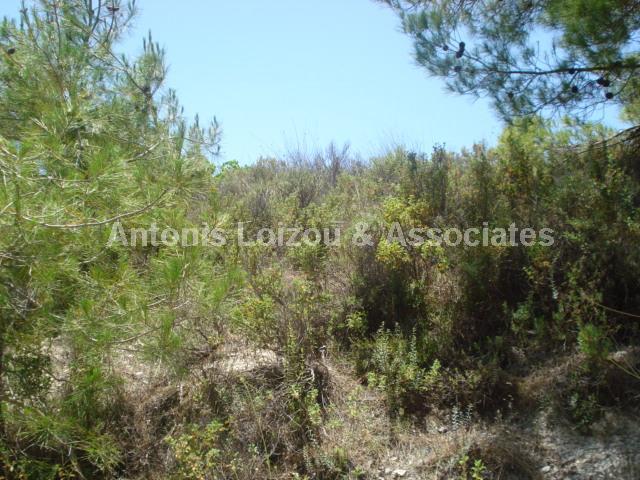 Land in Limassol (Pera Pedi) for sale
