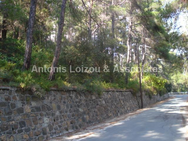 Land in Limassol (Platres) for sale