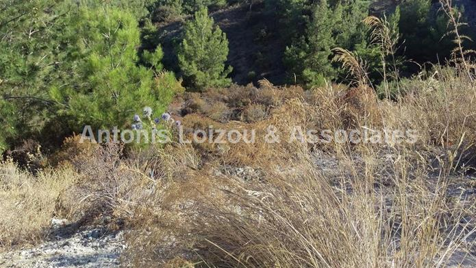 Field in Limassol (Platres) for sale