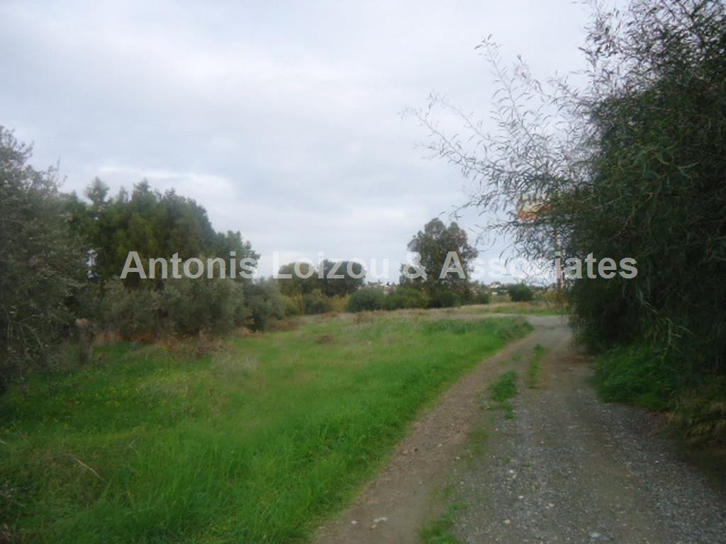 Residential/Commercial Plot properties for sale in cyprus