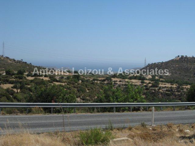 Field in Limassol (Prastio Avdimou) for sale