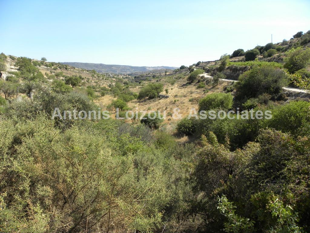 Field in Limassol (Vasa Koilaniou) for sale