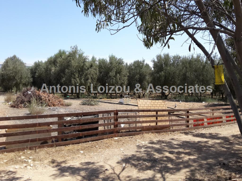 6,049m² Agricultural Plot in Deftera properties for sale in cyprus