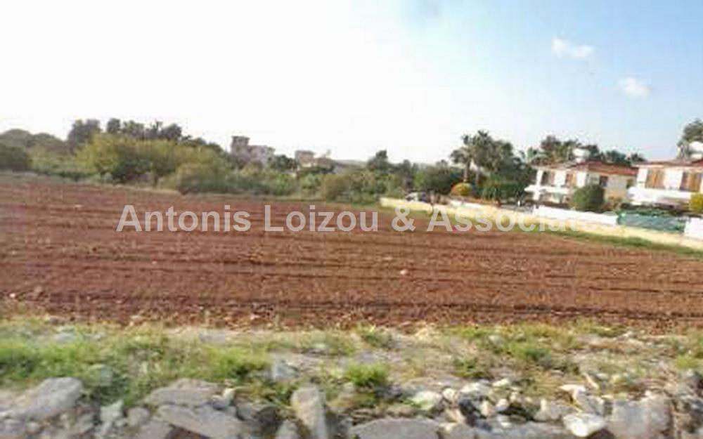 Agricultural field in Anarita For Sale Paphos properties for sale in cyprus