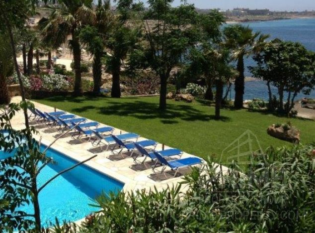 Business or Investment in Paphos (Chloraka) for sale