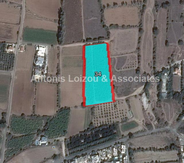 Field in Paphos (Chlorakas) for sale