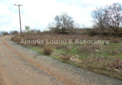 Field in Paphos (Ineia) for sale