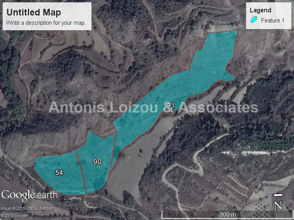 10,034 m² Field in Kannaviou properties for sale in cyprus