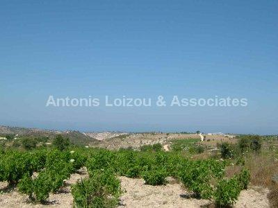 Land in Paphos (Kathikas) for sale