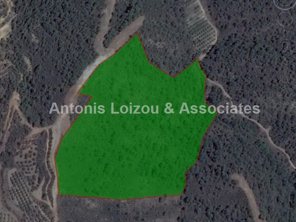 Field in Paphos (Lysoa ) for sale