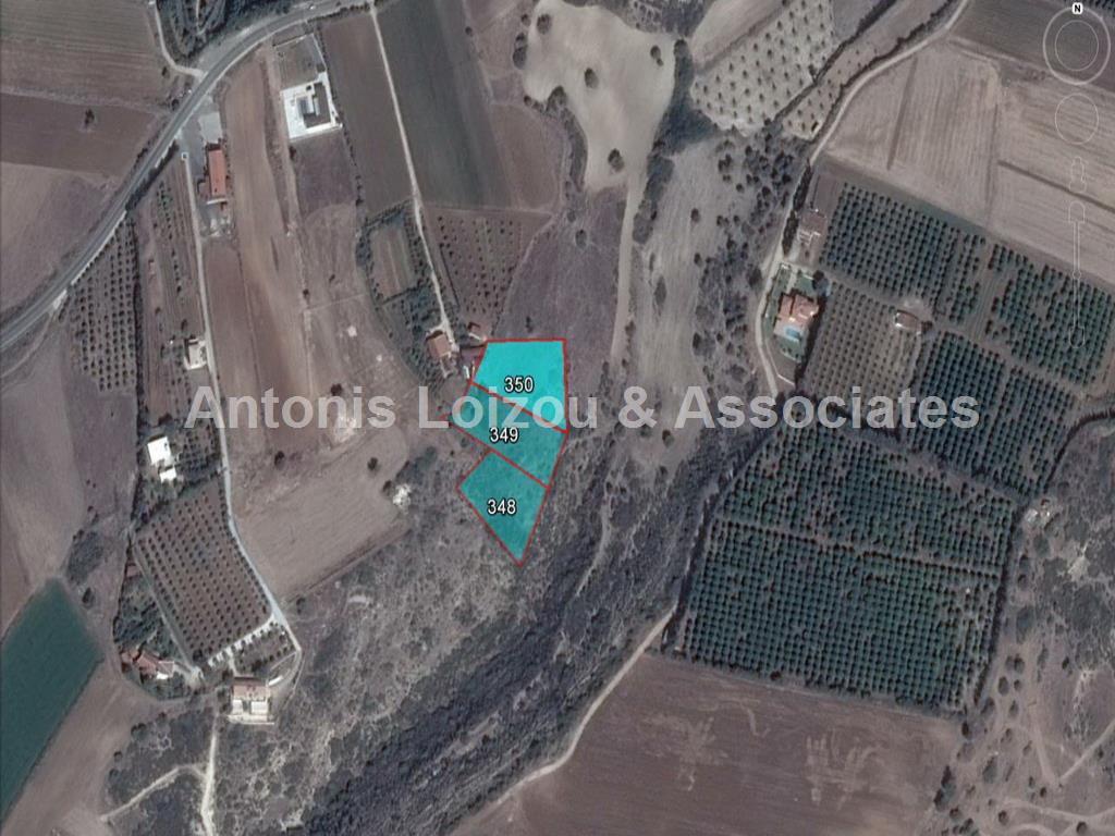 Field in Paphos (Nikoklia) for sale