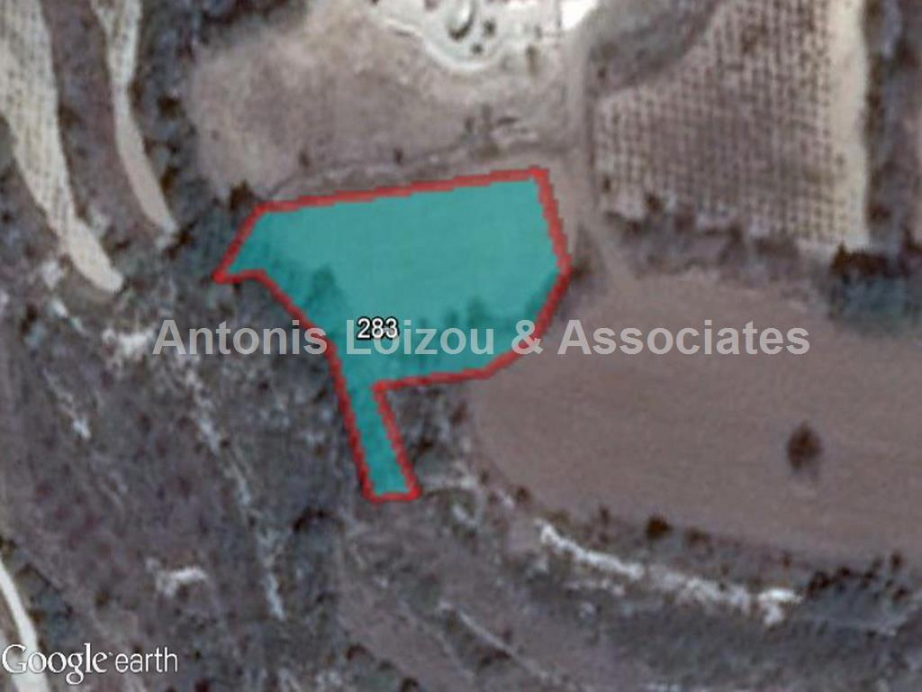 Field in Paphos (Polemi) for sale