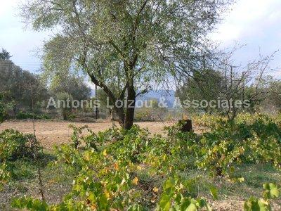 Land in Paphos (Polemi) for sale