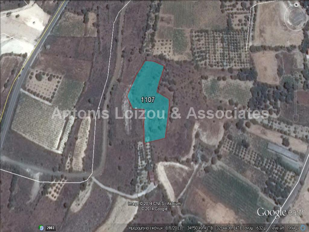 Field in Paphos (Praitori) for sale