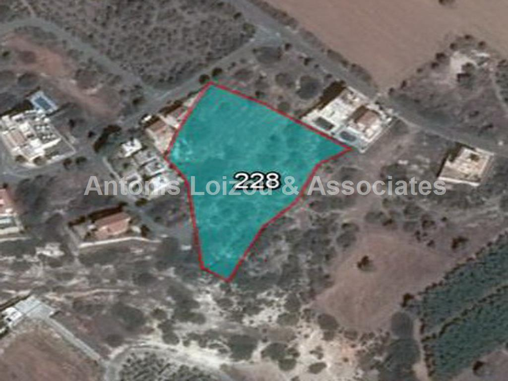 Field in Paphos (Sea Caves ) for sale