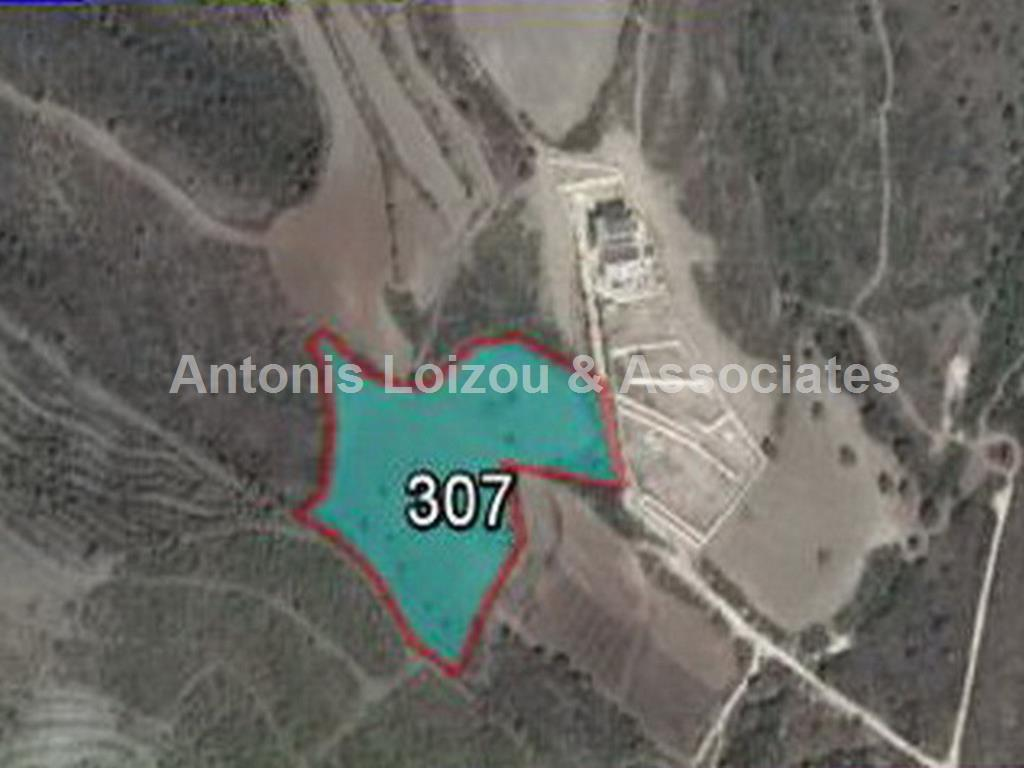 Field in Paphos (Tala) for sale