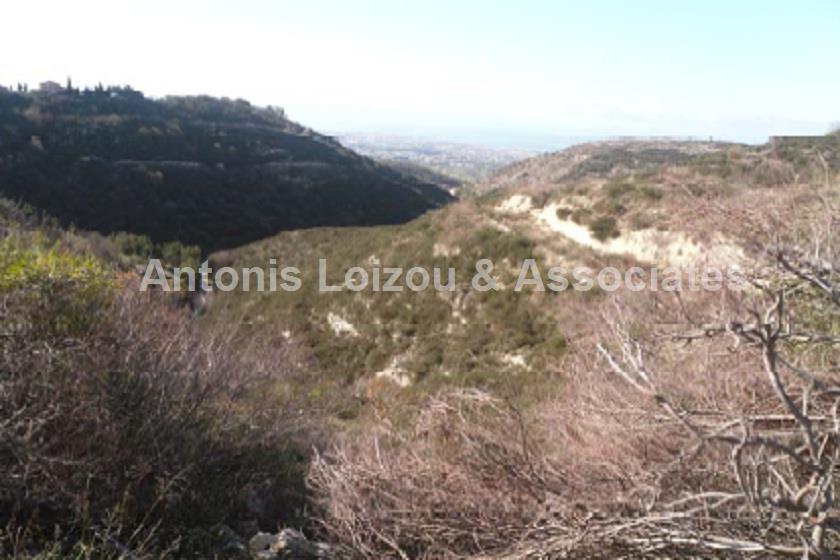 Field in Paphos (Tsada ) for sale