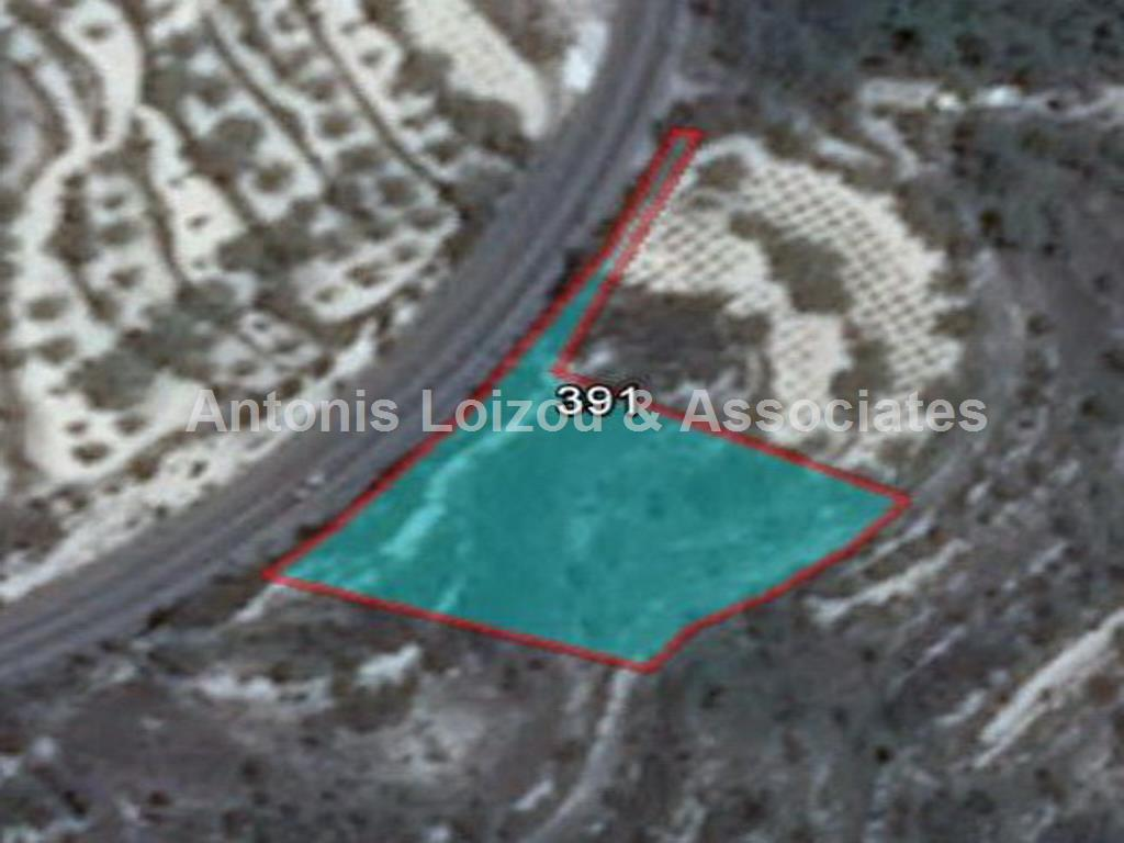 Field in Paphos (Tsada) for sale