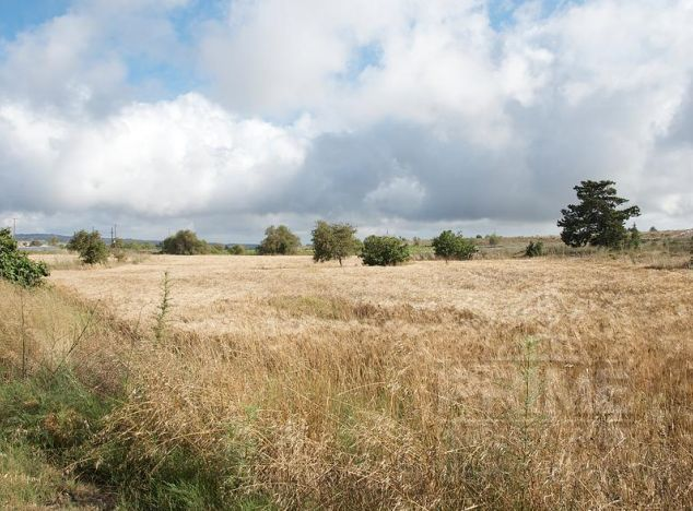 Land in  (Drouseia) for sale