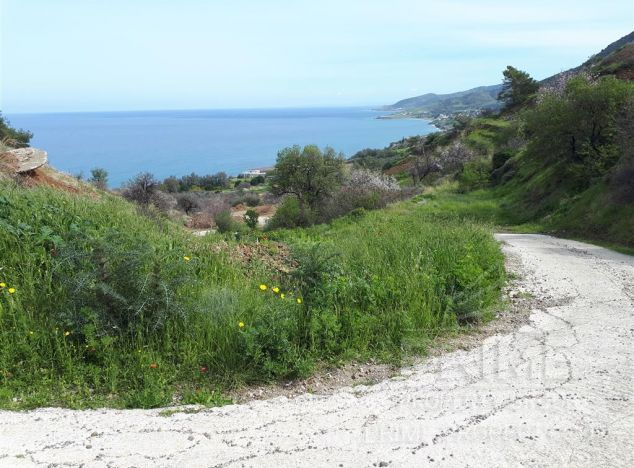 Sale of land in area: Pomos - properties for sale in cyprus